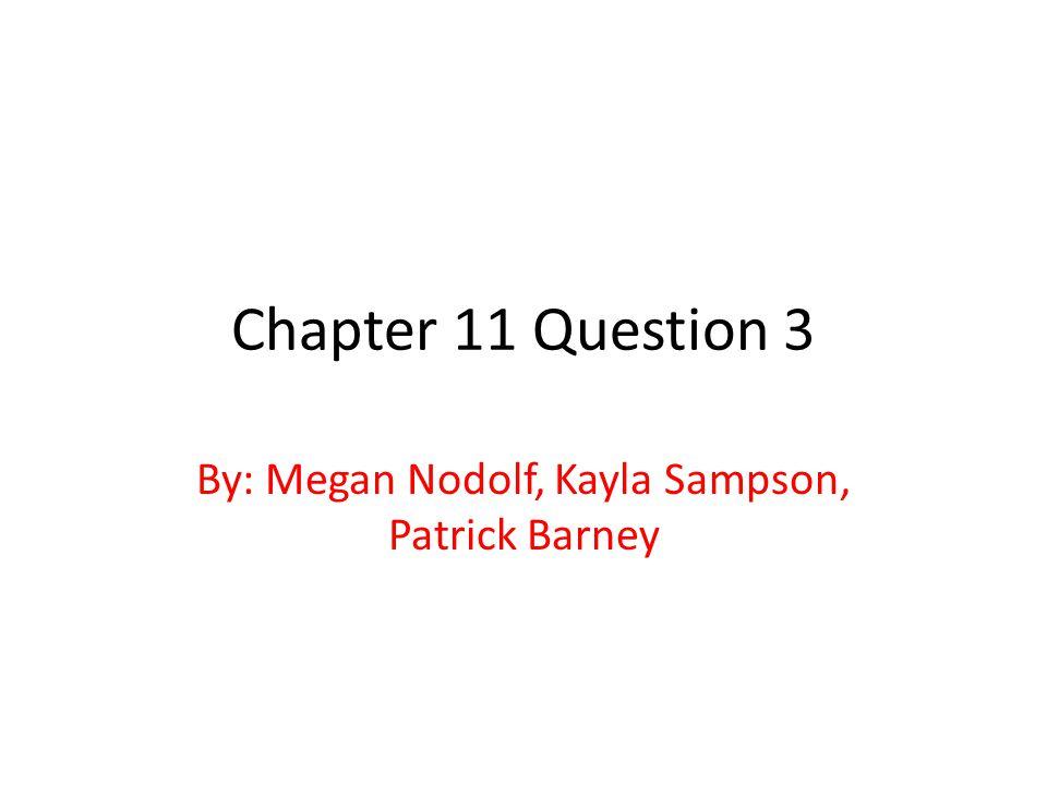 By: Megan Nodolf, Kayla Sampson, Patrick Barney