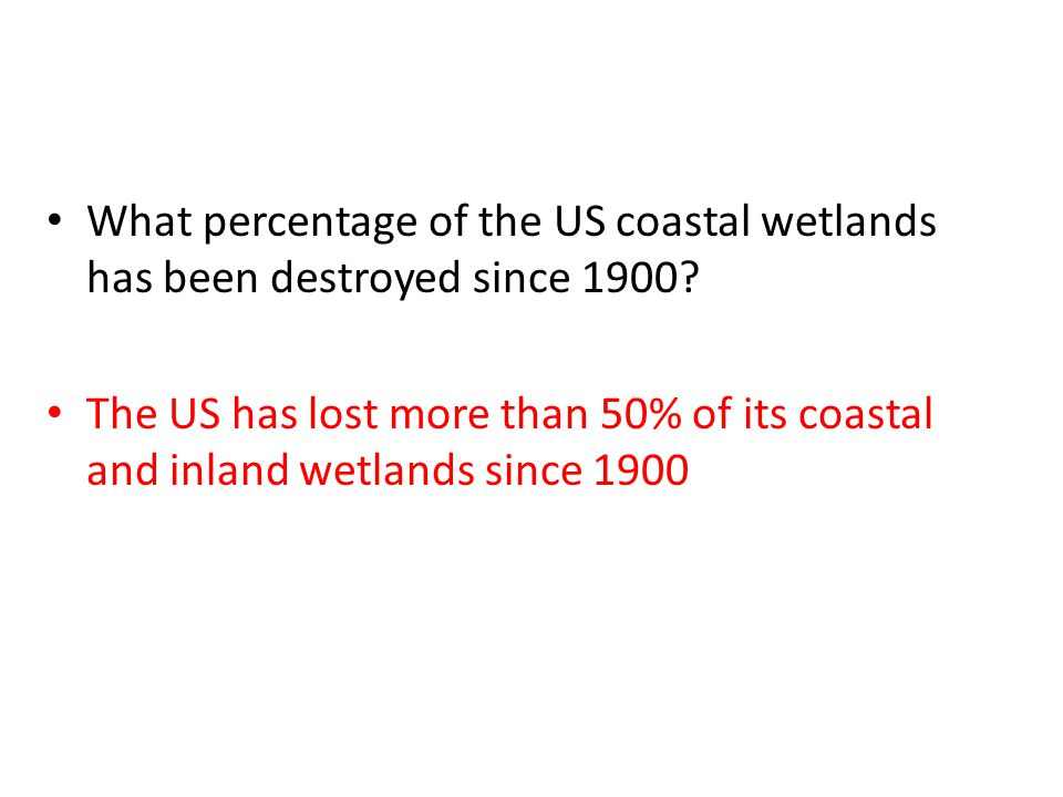 What percentage of the US coastal wetlands has been destroyed since 1900