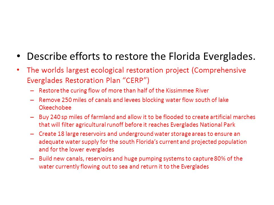 Describe efforts to restore the Florida Everglades.