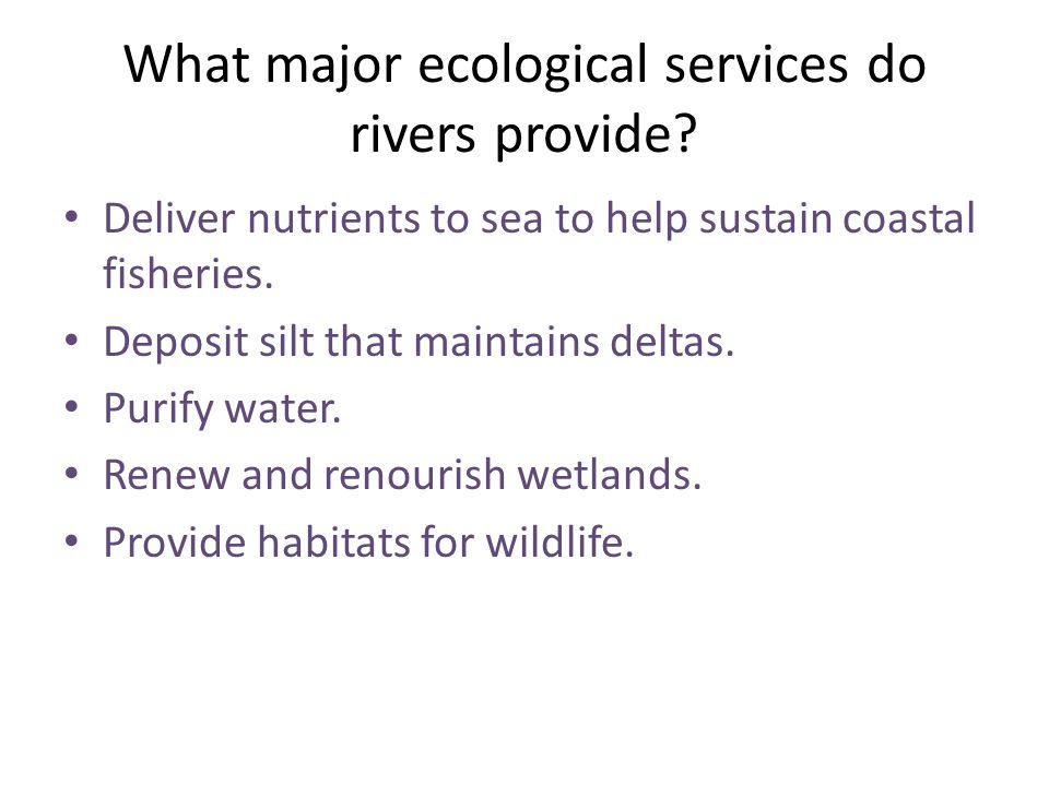 What major ecological services do rivers provide