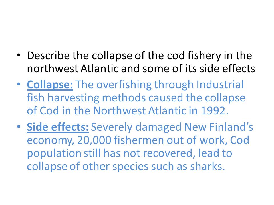 Describe the collapse of the cod fishery in the northwest Atlantic and some of its side effects