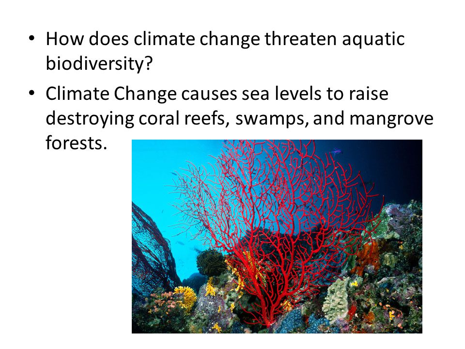 How does climate change threaten aquatic biodiversity