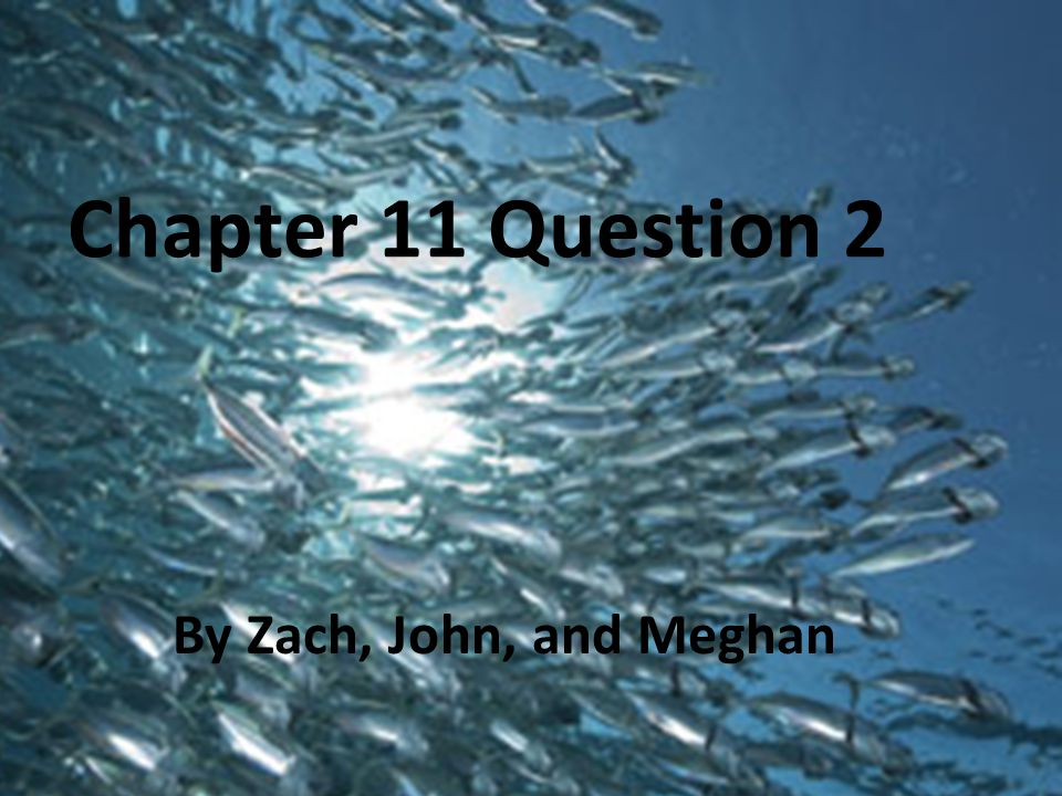 Chapter 11 Question 2 By Zach, John, and Meghan