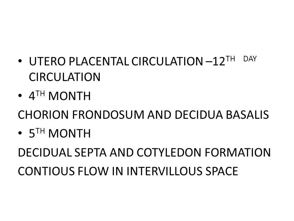 UTERO PLACENTAL CIRCULATION –12TH DAY CIRCULATION
