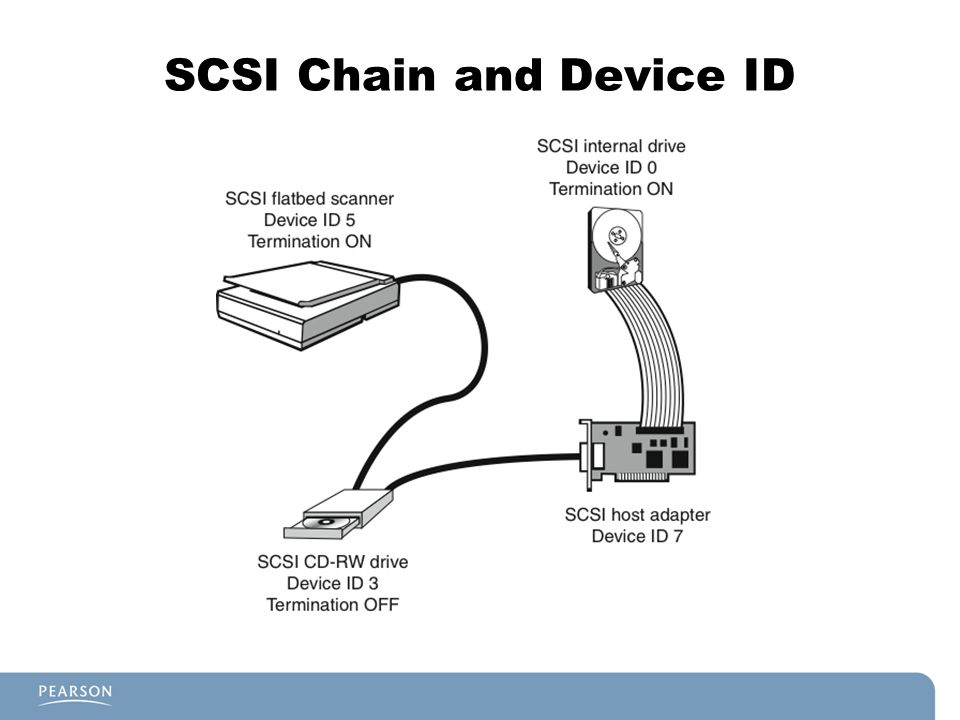 SCSI Chain and Device ID