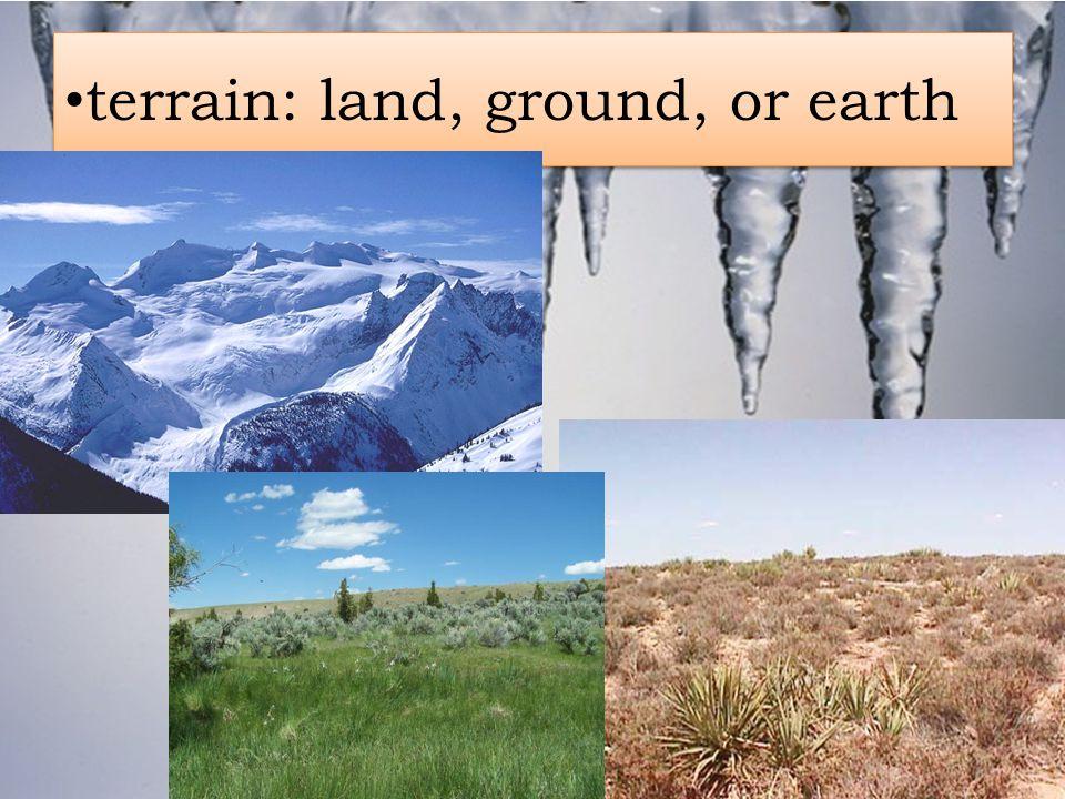 terrain: land, ground, or earth