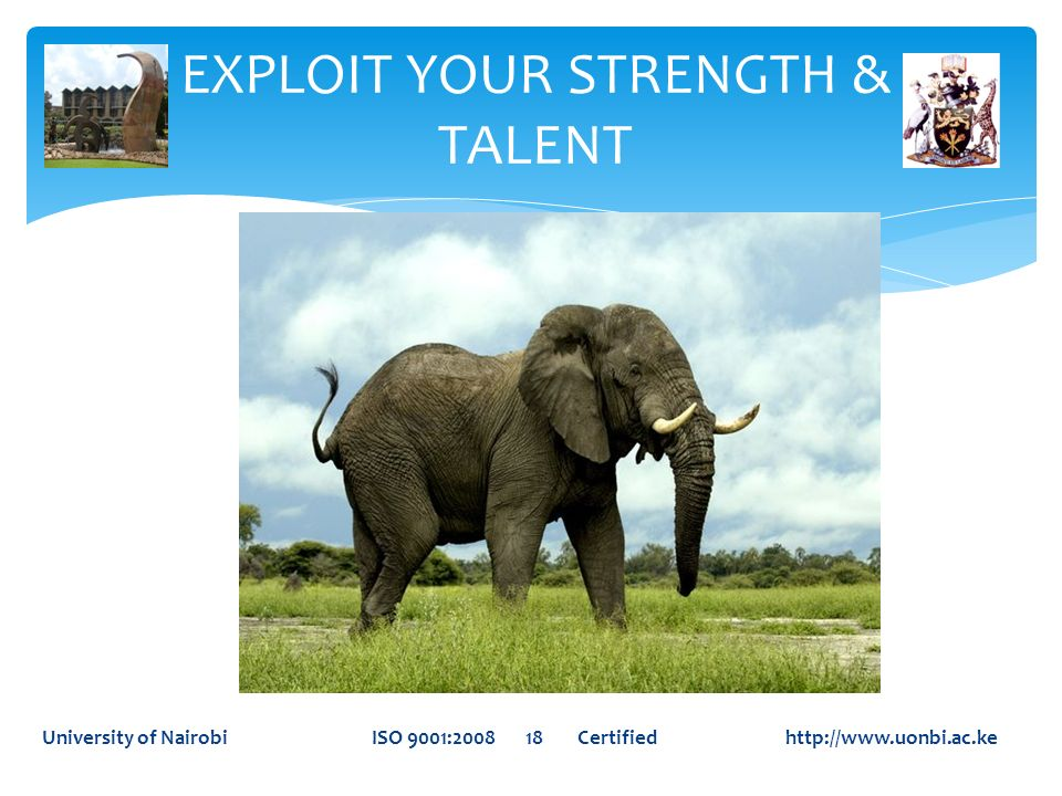 EXPLOIT YOUR STRENGTH & TALENT