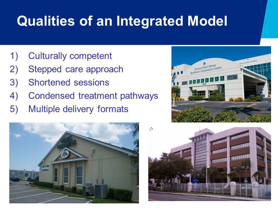 Qualities of an Integrated Model