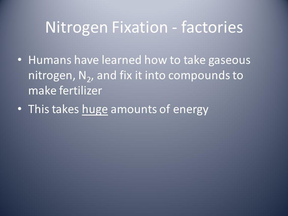 Nitrogen Fixation - factories