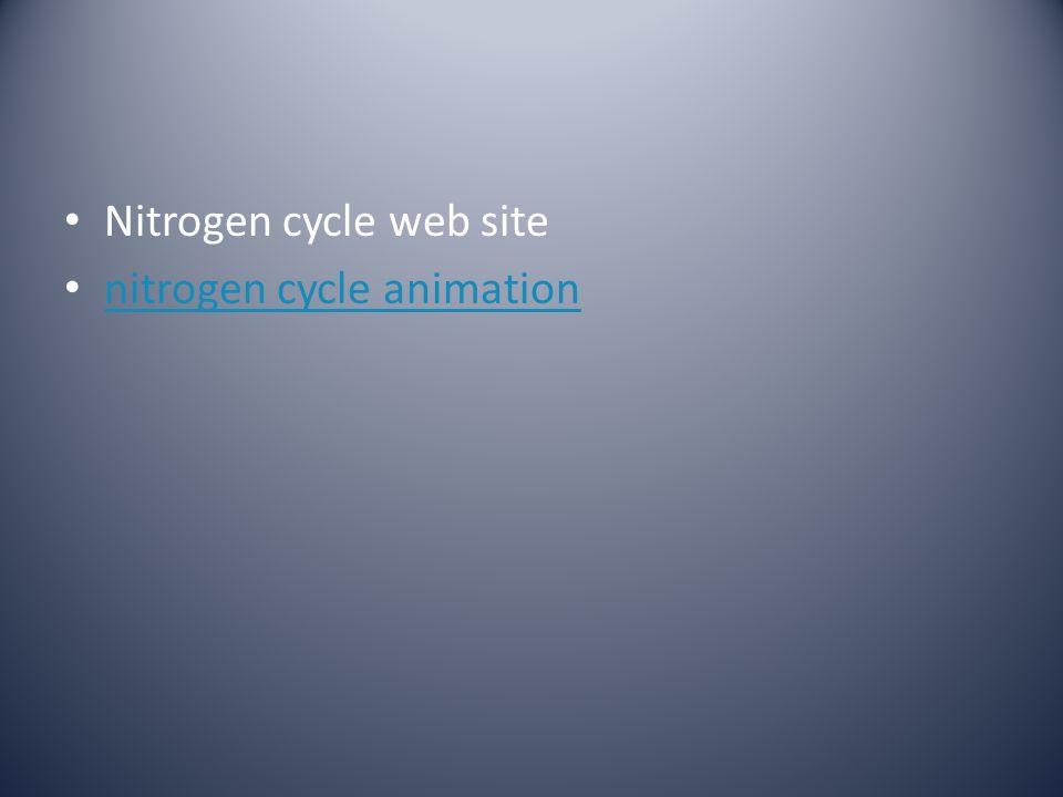 Nitrogen cycle web site