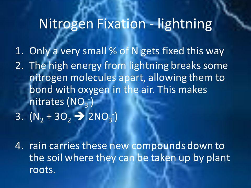 Nitrogen Fixation - lightning