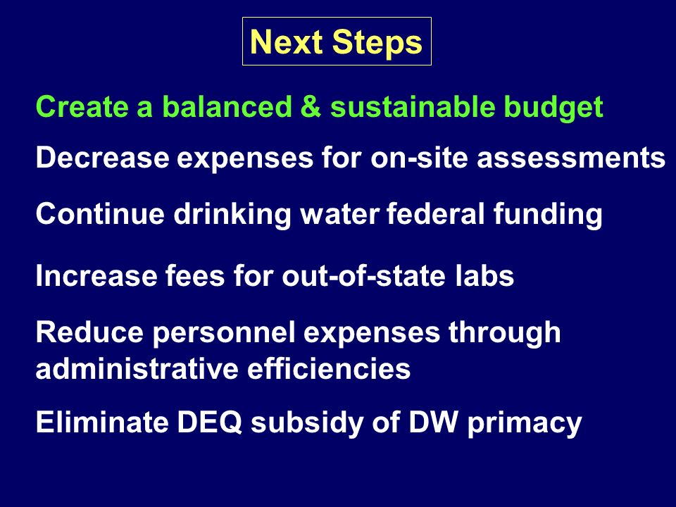 Next Steps Create a balanced & sustainable budget