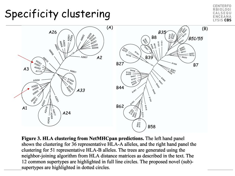 Specificity clustering