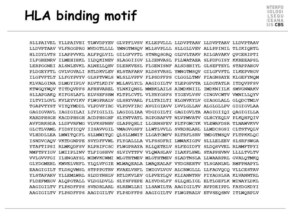 HLA binding motif SLLPAIVEL YLLPAIVHI TLWVDPYEV GLVPFLVSV KLLEPVLLL LLDVPTAAV LLDVPTAAV LLDVPTAAV.
