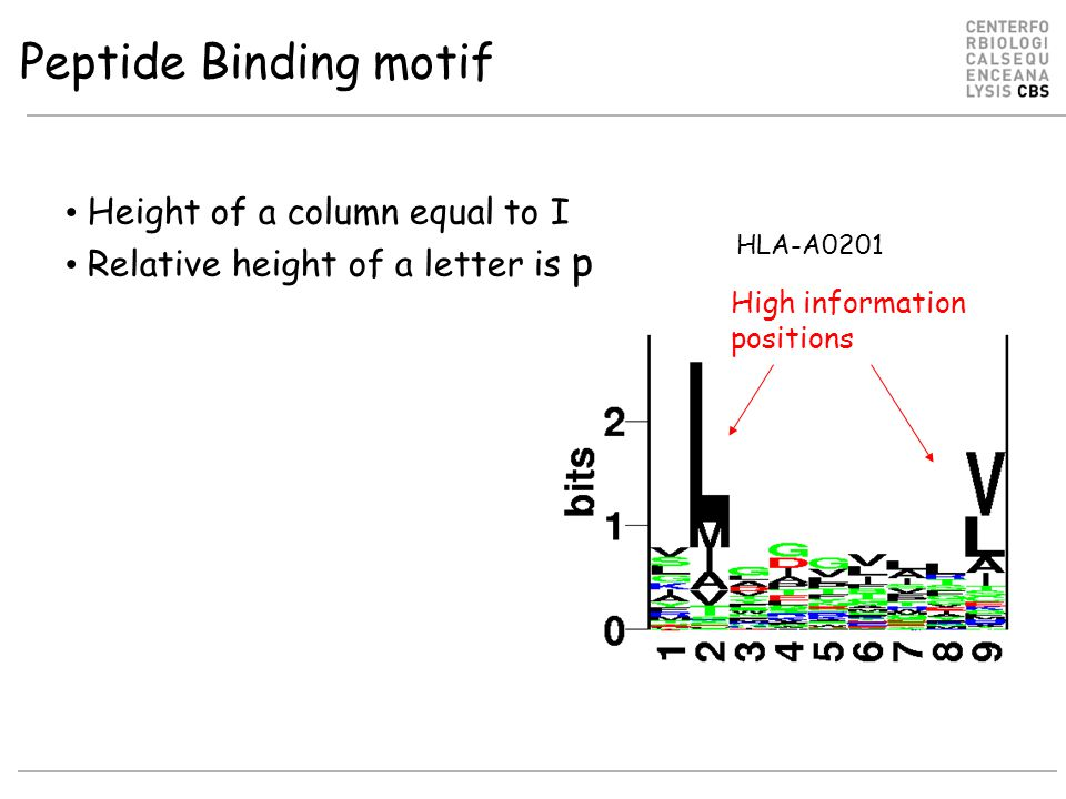 Peptide Binding motif Height of a column equal to I