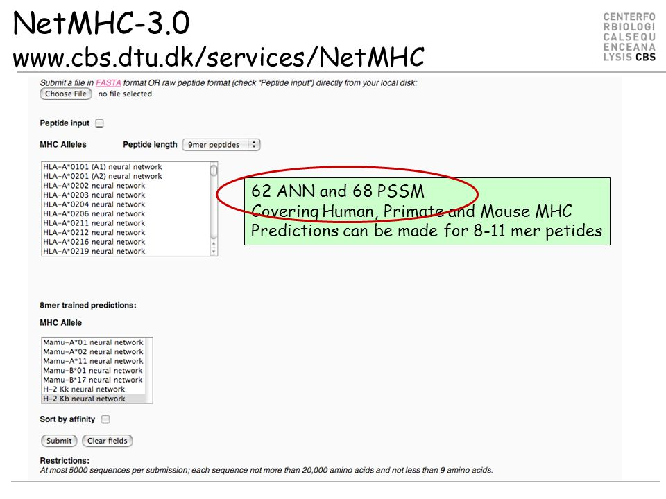 NetMHC-3.0 www.cbs.dtu.dk/services/NetMHC