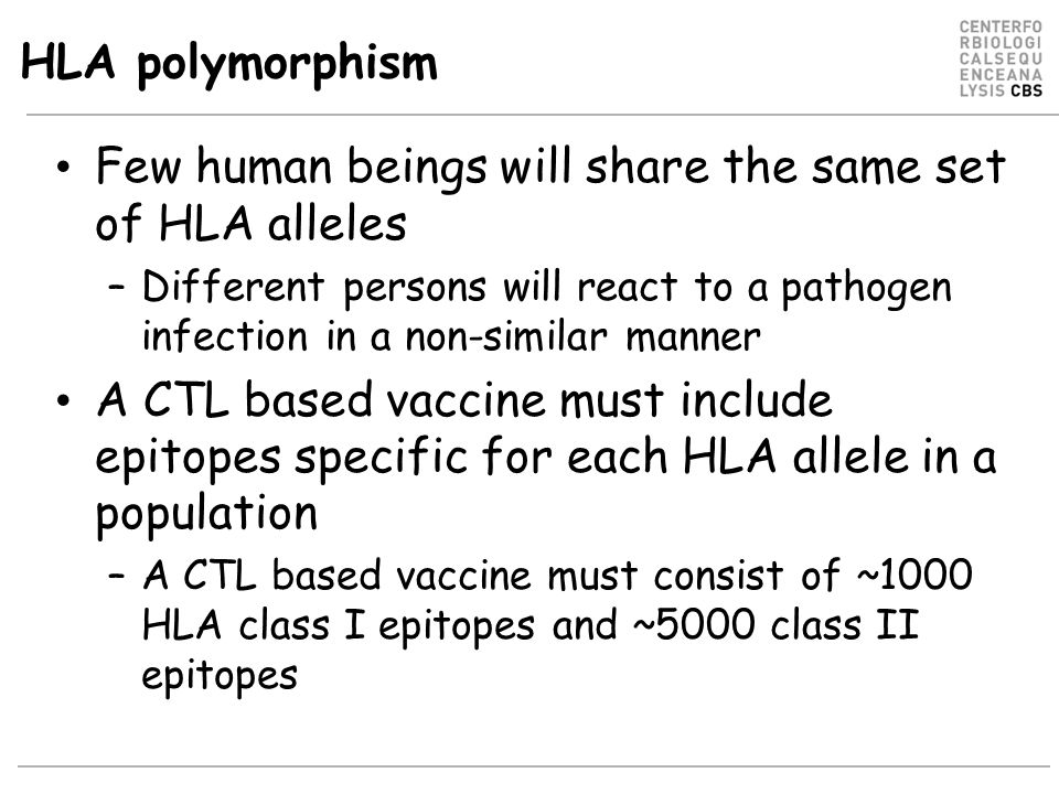 Few human beings will share the same set of HLA alleles