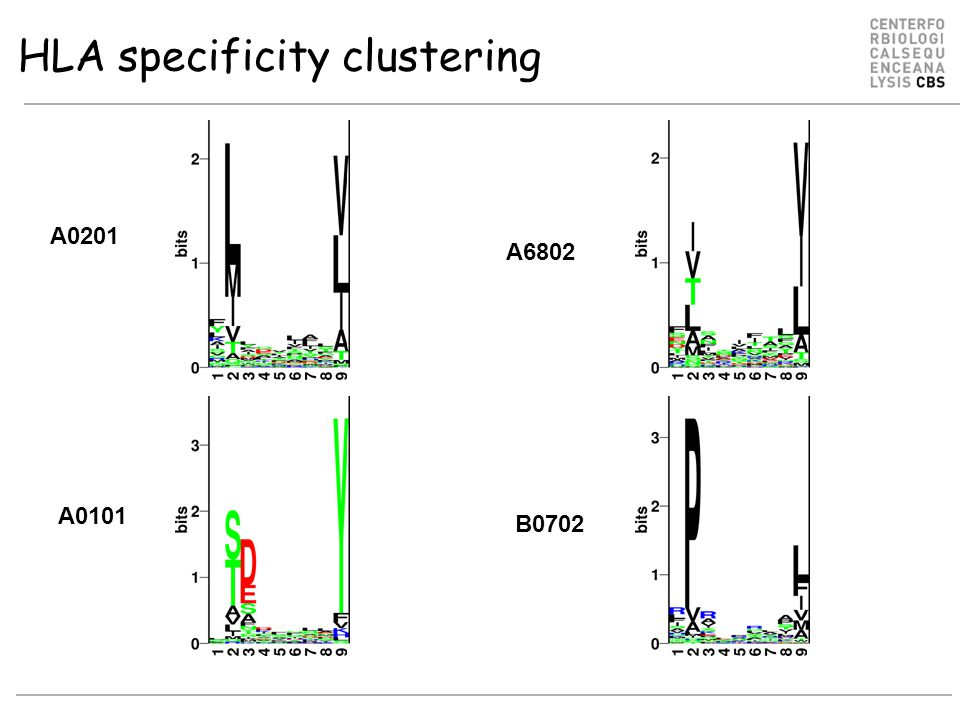 HLA specificity clustering