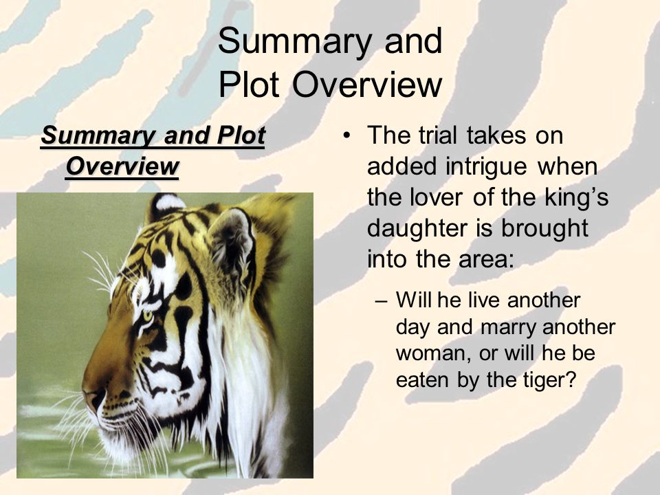 Summary and Plot Overview