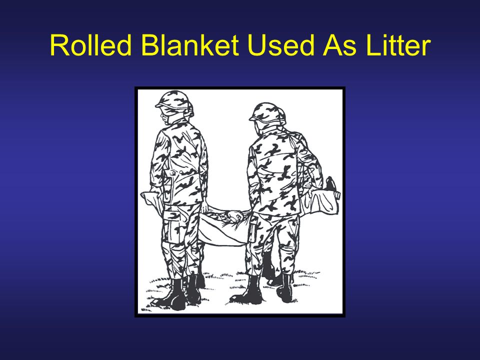 Rolled Blanket Used As Litter