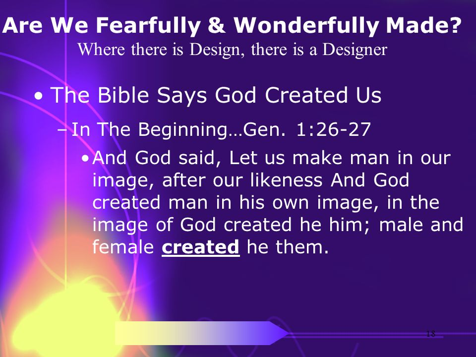 The Bible Says God Created Us