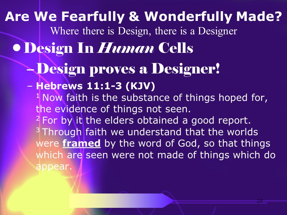 Design proves a Designer!