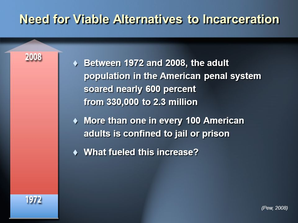 Need for Viable Alternatives to Incarceration