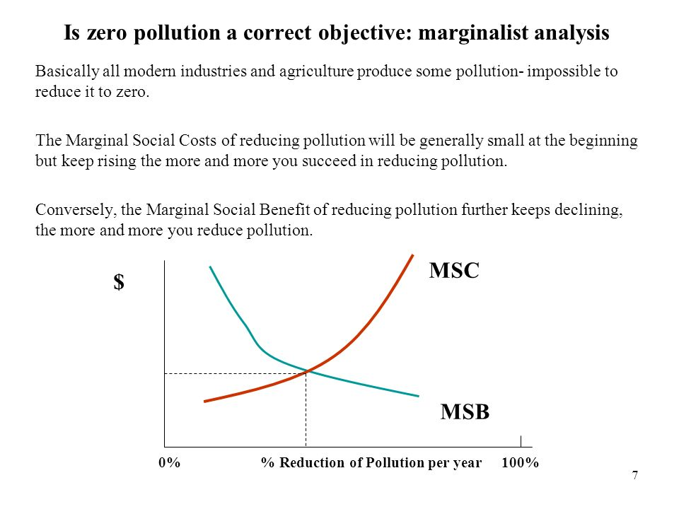 Is zero pollution a correct objective: marginalist analysis