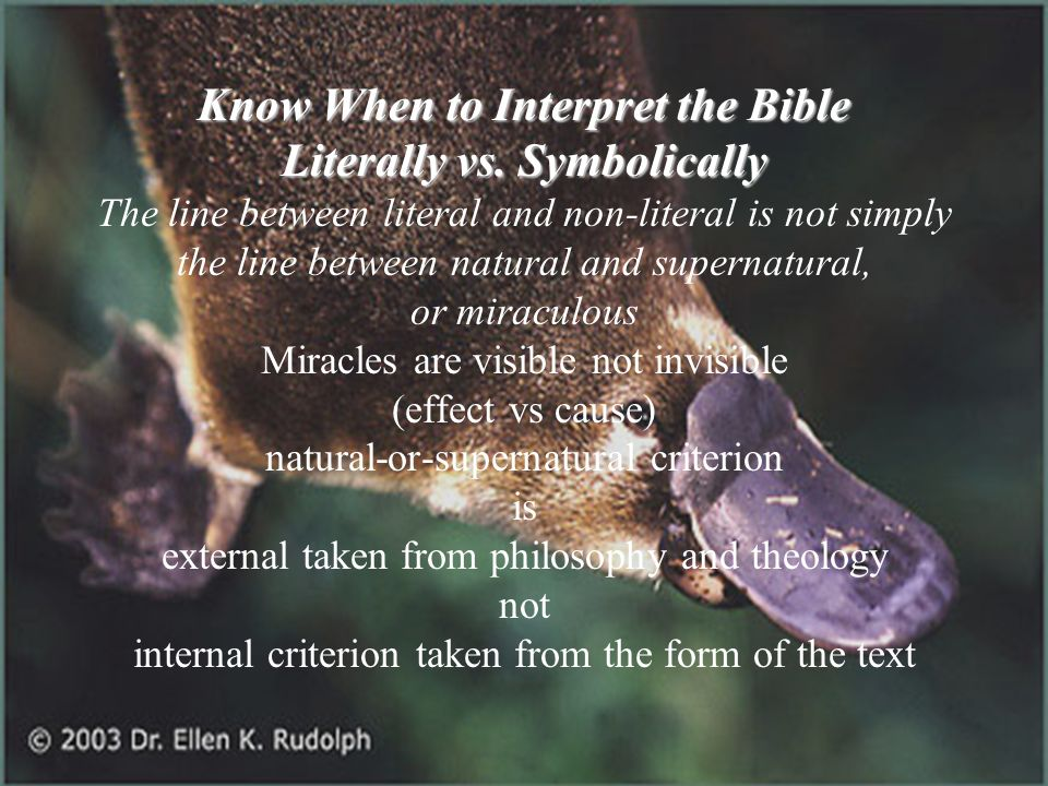 Know When to Interpret the Bible Literally vs. Symbolically