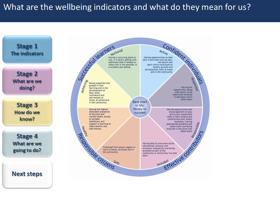 What are the wellbeing indicators and what do they mean for us