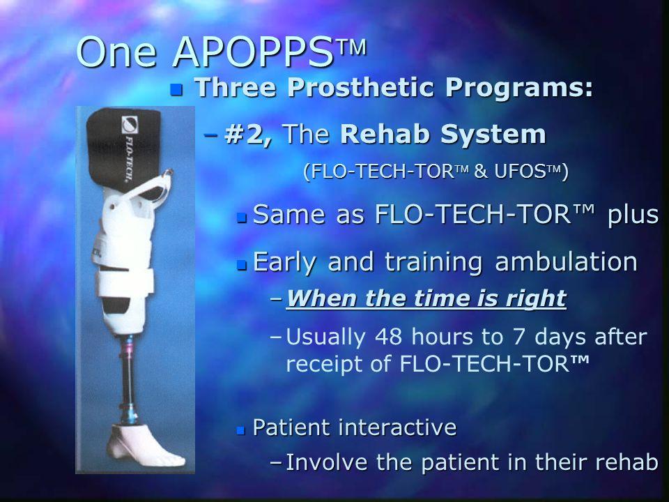 One APOPPS Three Prosthetic Programs: #2, The Rehab System