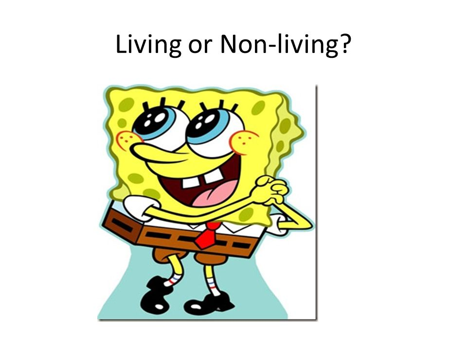 Living or Non-living