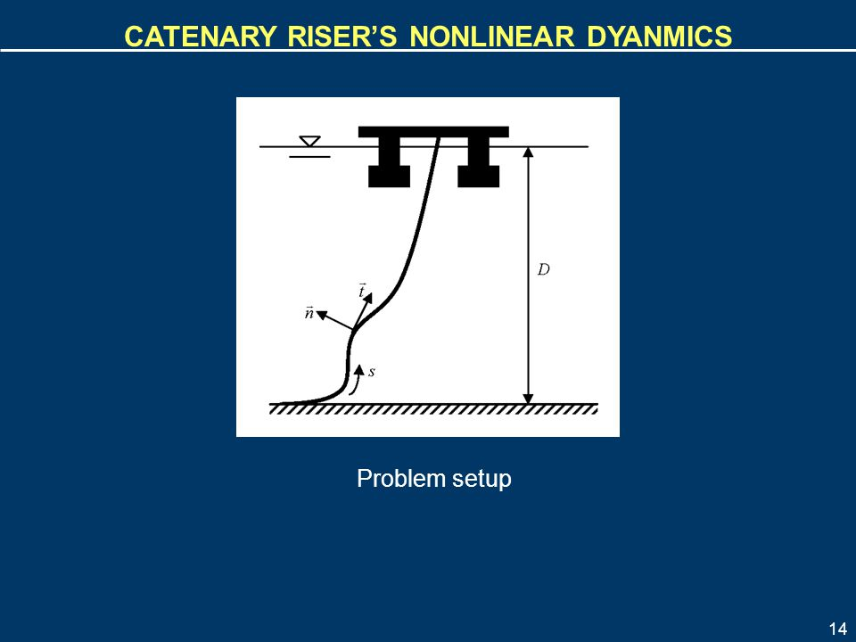 Catenary riser's nonlinear dyanmics