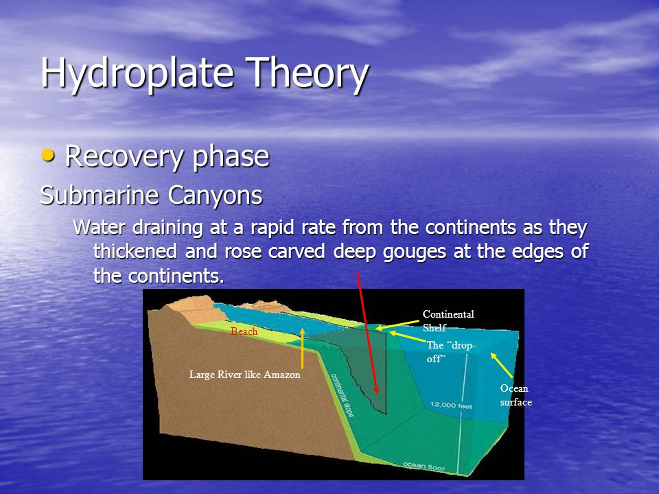 Hydroplate Theory Recovery phase Submarine Canyons