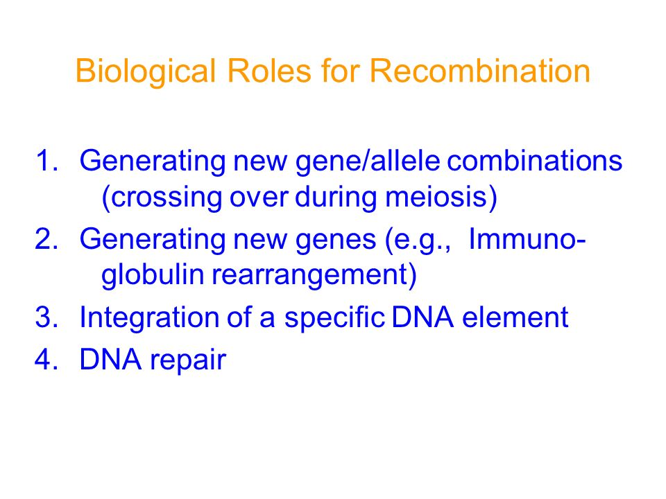Biological Roles for Recombination