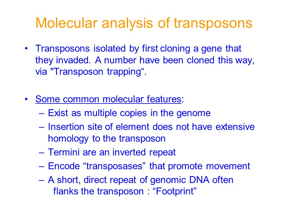 Molecular analysis of transposons