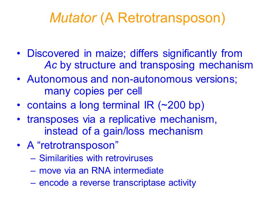 Mutator (A Retrotransposon)