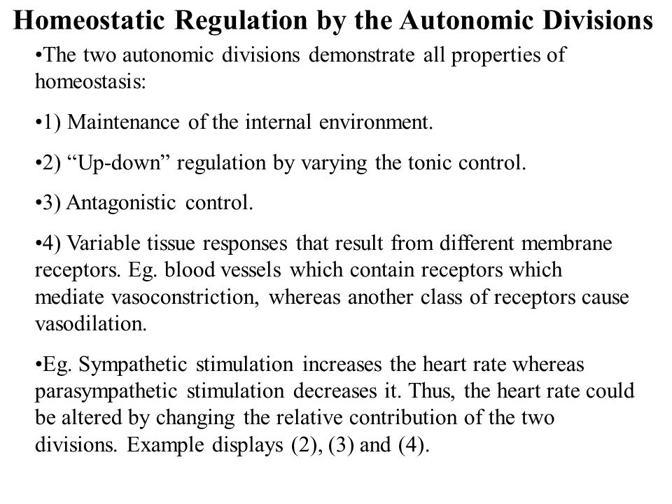 Homeostatic Regulation by the Autonomic Divisions