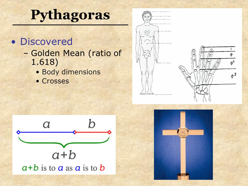 Pythagoras Discovered Golden Mean (ratio of 1.618) Body dimensions