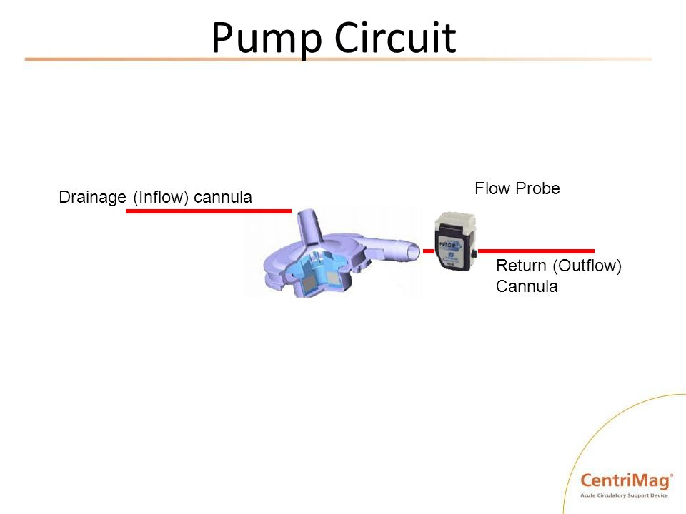 Pump Circuit Flow Probe Drainage (Inflow) cannula