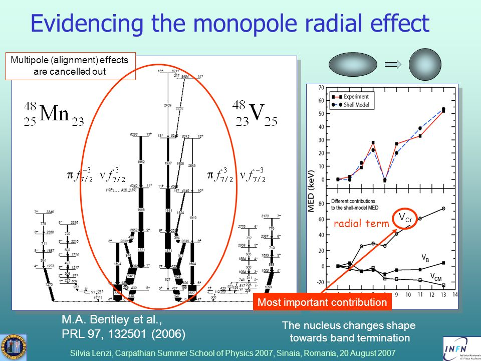 Evidencing the monopole radial effect
