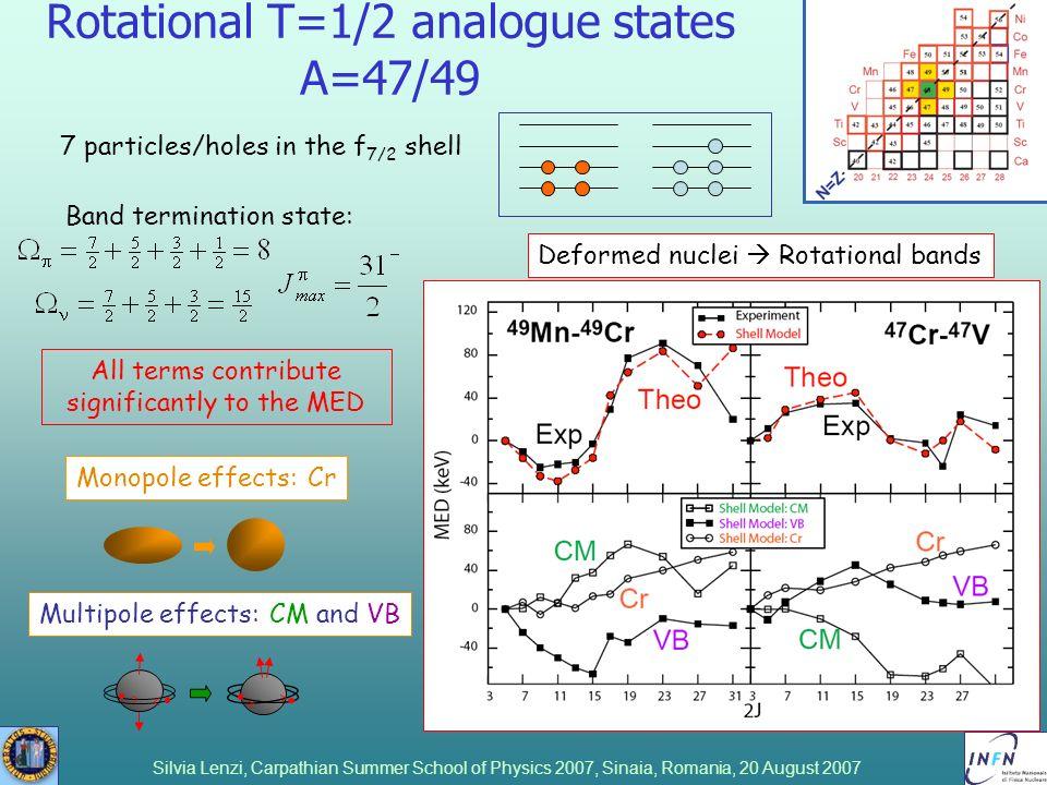 Rotational T=1/2 analogue states A=47/49