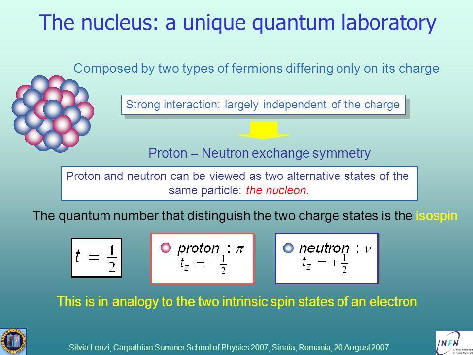The nucleus: a unique quantum laboratory
