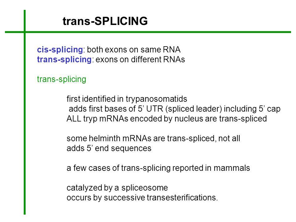 trans-SPLICING cis-splicing: both exons on same RNA