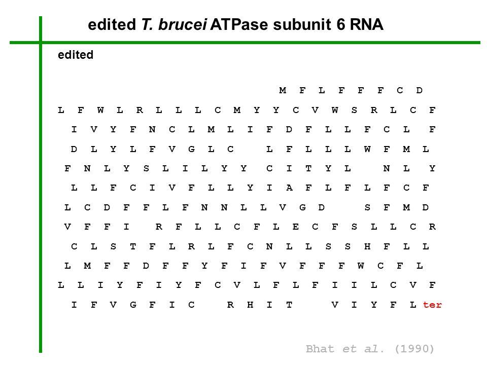 edited T. brucei ATPase subunit 6 RNA