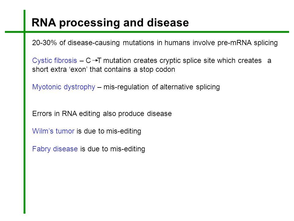 RNA processing and disease