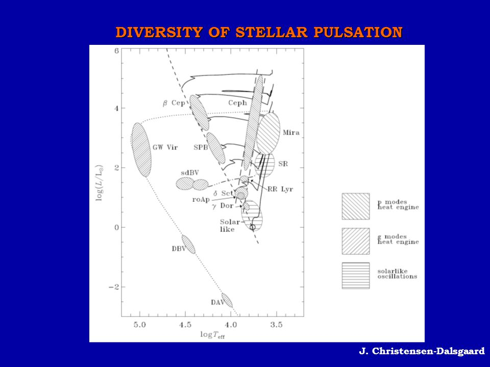DIVERSITY OF STELLAR PULSATION
