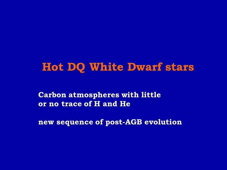 Hot DQ White Dwarf stars