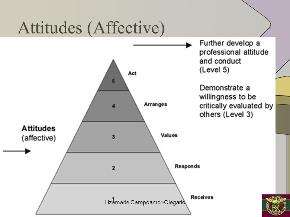 Attitudes (Affective)