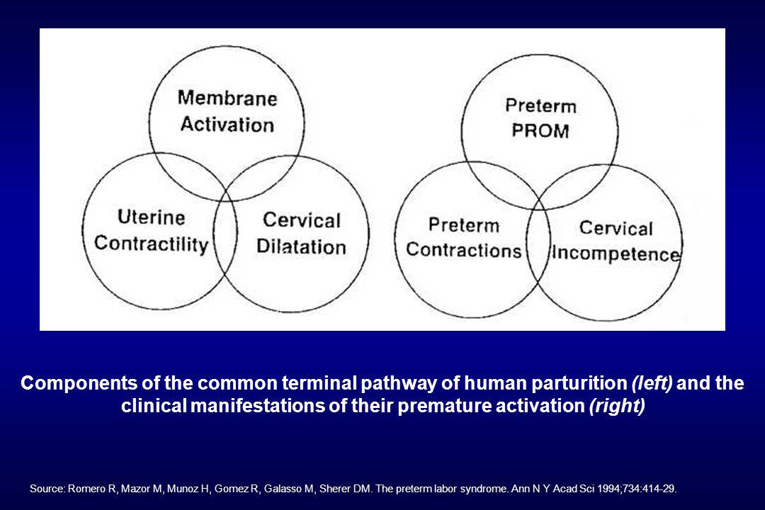 Components of the common terminal pathway of human parturition (left) and the clinical manifestations of their premature activation (right)